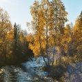 Pyhäjoen ruskaa