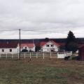 Mäkelän talot